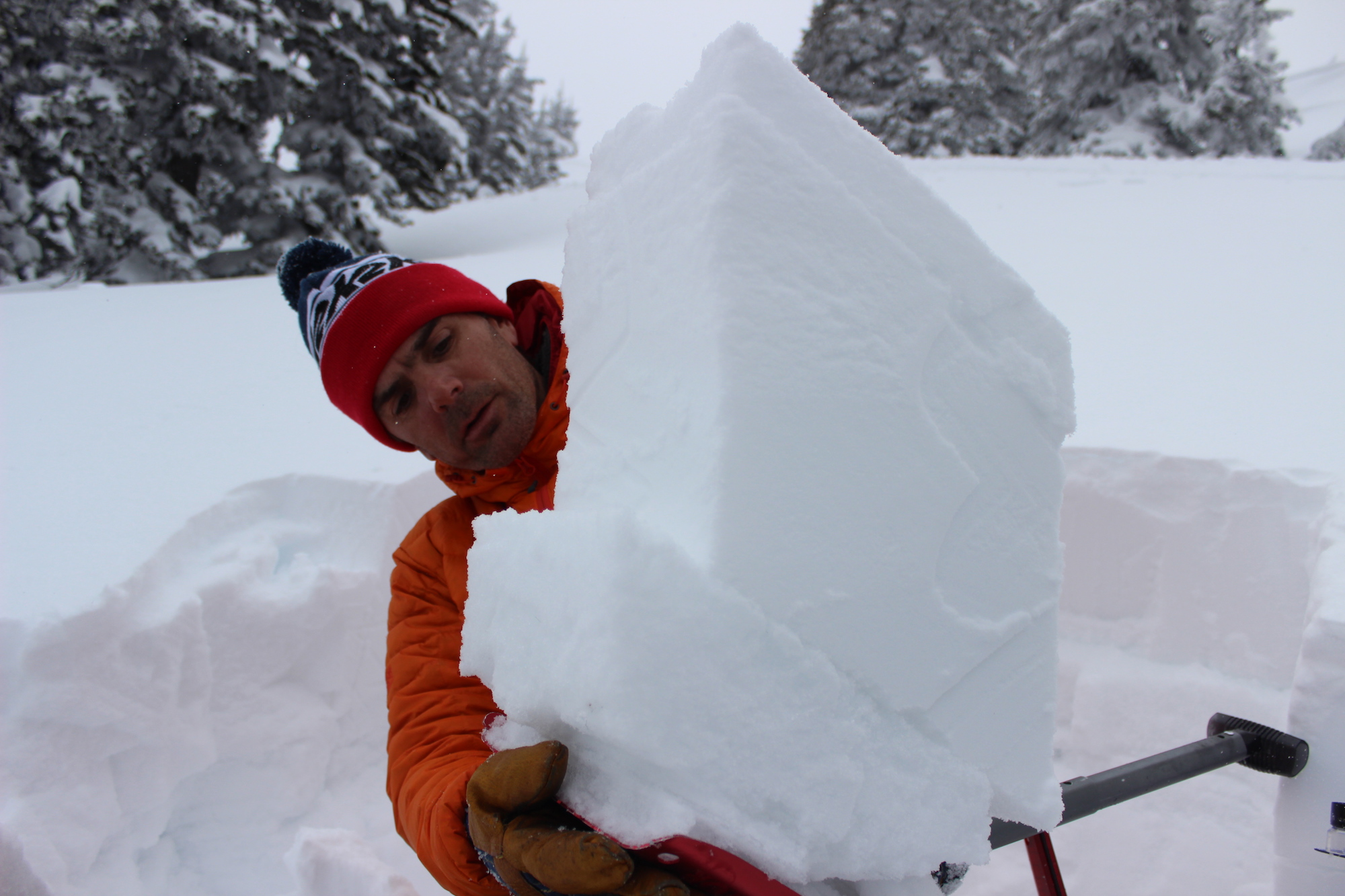 Different snowfalls can be identified in the snowpack like slices in a layer cake.