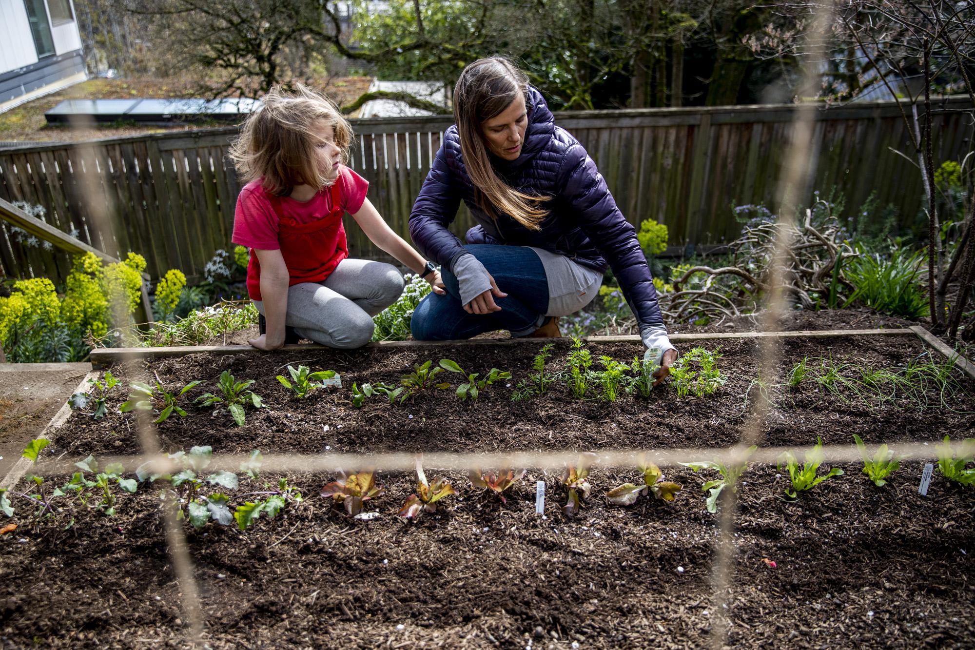 WWII-era 'victory gardens' make a comeback amid coronavirus | Crosscut