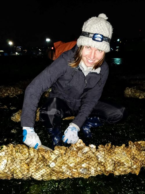 Photo of a scientist with a net of oysters.
