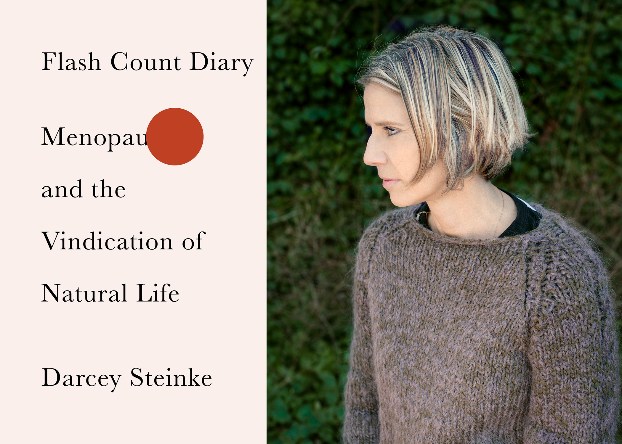 Darcey Steinke, author of Flash Count Diary
