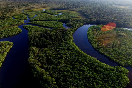 amazon rainforest aerial
