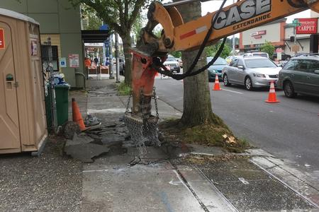 Work on a sidewalk where tree roots had caused trouble