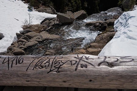 Mount Rainier National Park graffiti