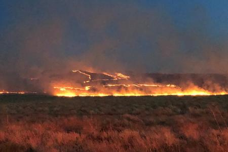 Flames burn sagebrush on the side of Rattlesnake Mountain, which was part of the Cold Creek Fire in July.