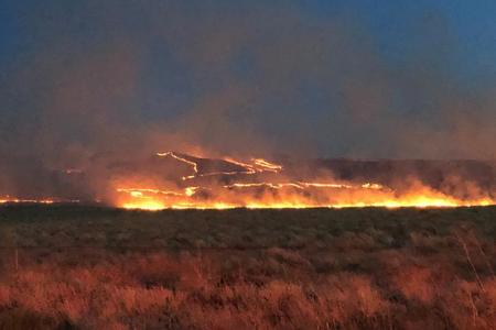The Cold Creek Fire burned nearly 42,000 acres of sagebrush and grassland near Hanford in July