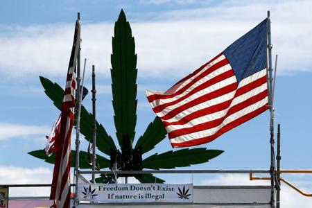 American flag with weed plant