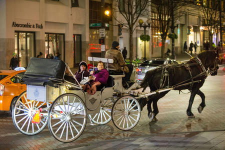 Seattle's last horse-drawn carriage.