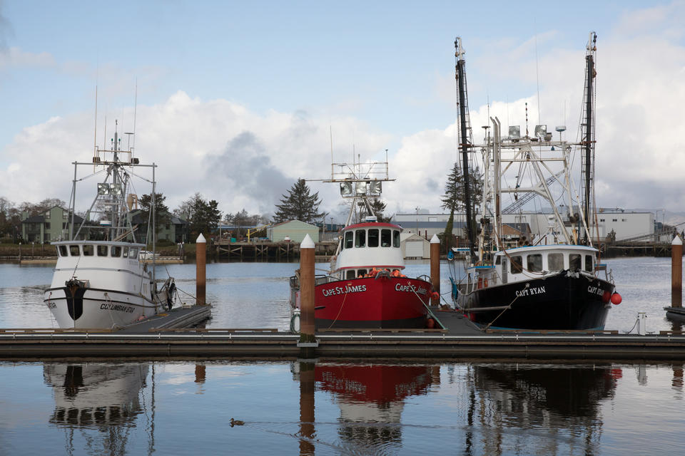 Fishing boats moored at the Warrenton Marina near Astoria, Oregon.