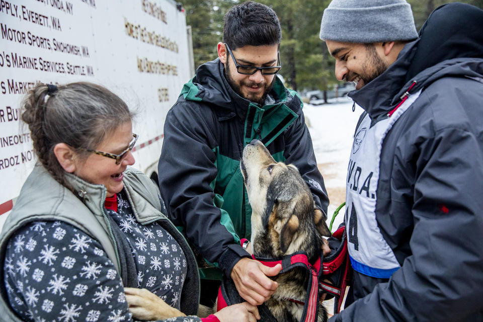 From left, Jeanne Roxby, Pepe Flores, and Marcos Padilla put harnesses on the sled dogs before their race in the Northwest Sled Dog Association Dogtown Winter Derby at Camp Koinonia in Cle Elum on Saturday, Jan. 12, 2019. Three racers from Urban Mushing Leon in Mexico traveled to Washington to work with the Roxby family and their dogs and compete for the first time on snow. (Photo by Dorothy Edwards/Crosscut)
