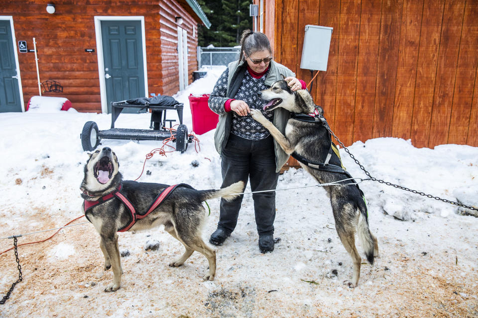Jeanne Roxby visits with some of her sled dogs in between races during the Northwest Sled Dog Association Dogtown Winter Derby at Camp Koinonia in Cle Elum on Saturday, Jan. 12, 2019. (Photo by Dorothy Edwards/Crosscut)