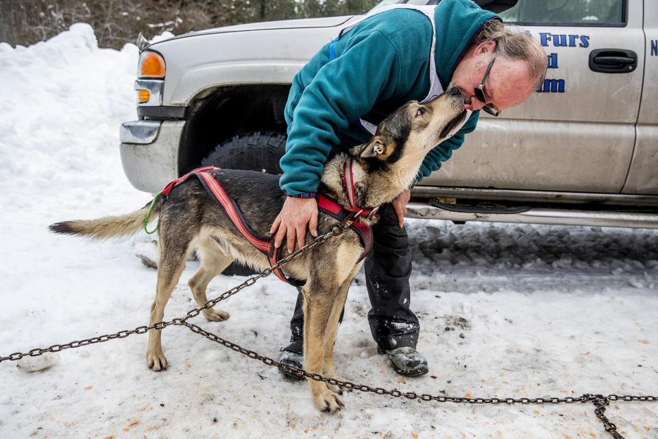 Larry Roxby kisses one of his dogs after finishing his race in the Northwest Sled Dog Association Dogtown Winter Derby at Camp Koinonia in Cle Elum on Saturday, Jan. 12, 2019. (Photo by Dorothy Edwards/Crosscut)