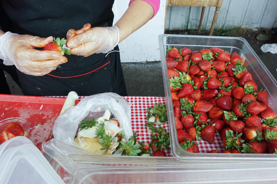 A woman picks and pits strawberries from a large container
