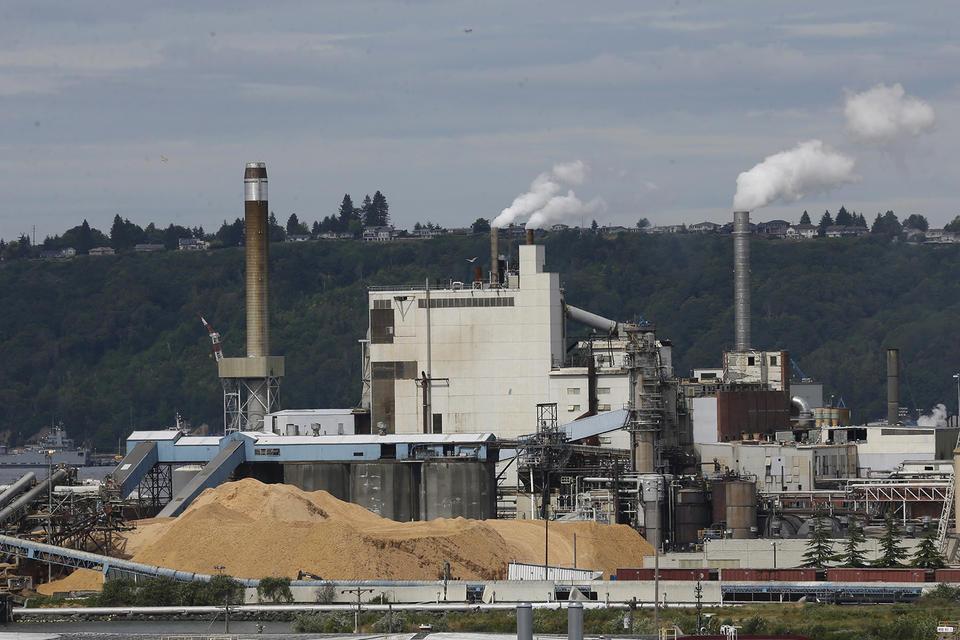 Smoke comes out of smokestacks at a paper mill