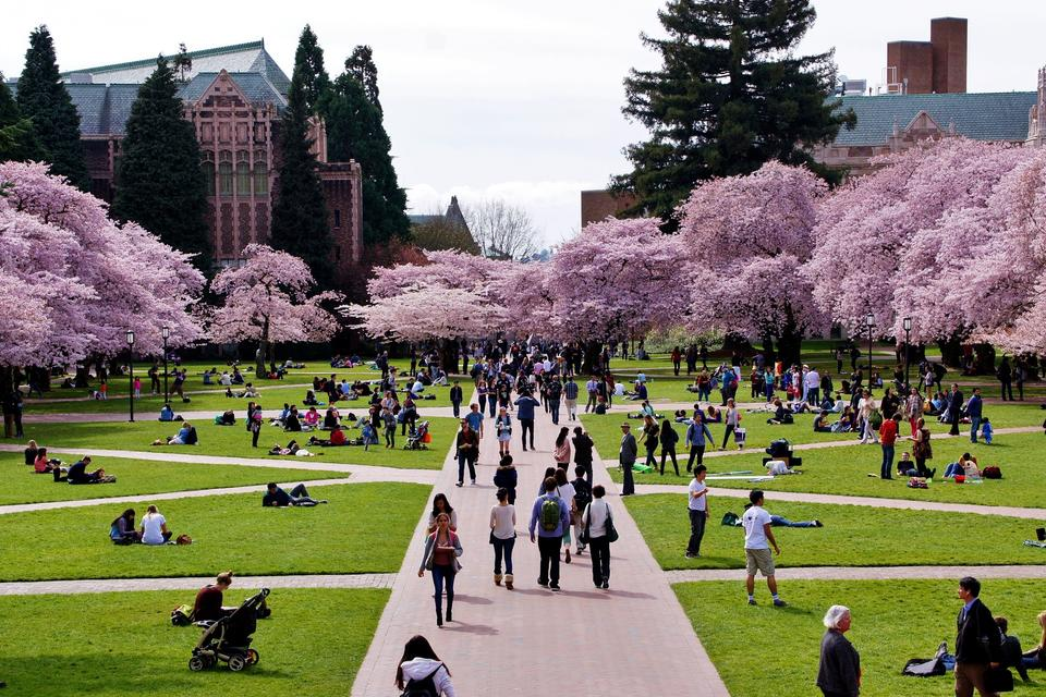 University of Washington UW